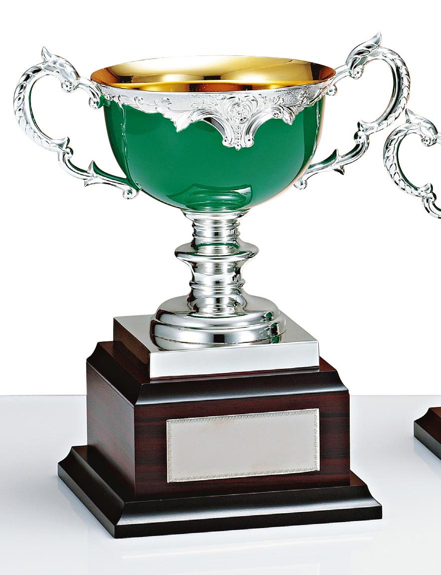 【文字彫刻無料】優勝カップ(C1601A)高さ:26cm/リボン無料