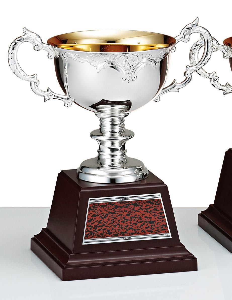 【文字彫刻無料】優勝カップ(C1633A)高さ:25.5cm/リボン無料