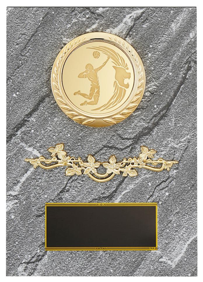 永遠の定番 文字彫刻無料 楯 PLW642A 高さ:21cm 新登場 種目選択可