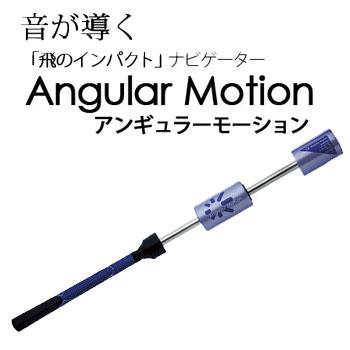アンギュラーモーション(E-スイング) 左右兼用 (G-277) Angular Motion 横田英治プロ監修 素振りギア【ラッキーシール対応】