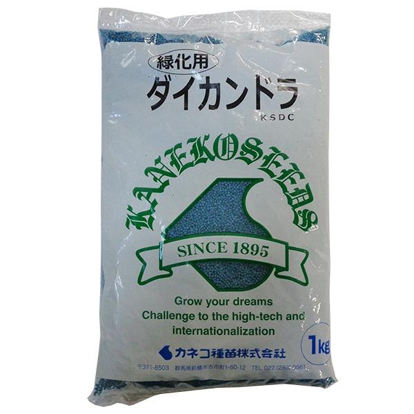 グランドカバーに最適 激安挑戦中 スーパーSALE カネコ種苗 緑肥種 1kg 店舗 ダイカンドラ