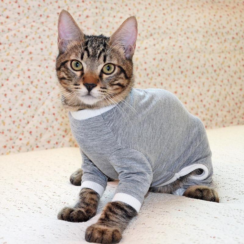 猫の暮らし ウェア・保護服>スーパーガードスーツ キャット