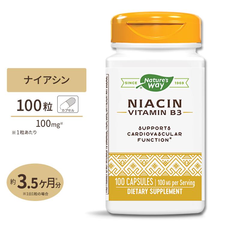 ナイアシン ビタミンB3 100mg 高い素材 100粒 売却 ネイチャーズウェイ Nature's Way
