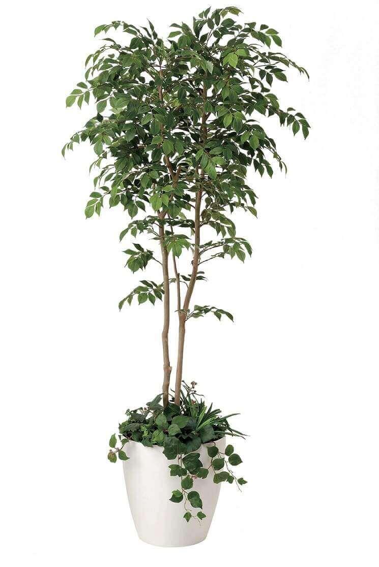 光触媒 人工観葉植物 光の楽園 光触媒マウンテンアッシュ1.8植栽付