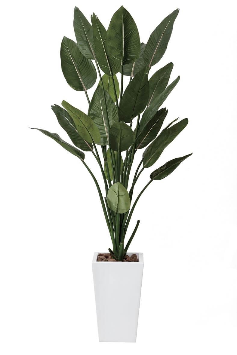 光触媒 人工観葉植物 光の楽園 光触媒ストレチアW1.6