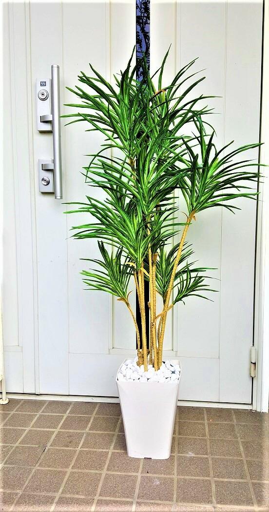 人工観葉植物ユッカ1.2m送料無料触媒加工品