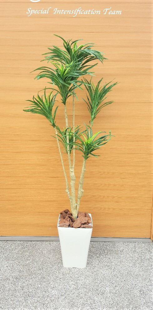 【人工観葉植物】【ユッカ】1.5m【送料無料】【触媒加工済】