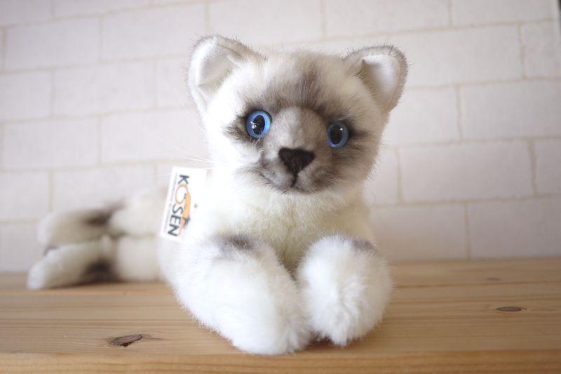 【すぐに使えるクーポン配布中】ケーセン ねそべり猫(小)ヒマラヤン 【ケーセン 動物 出産祝い 誕生日 赤ちゃん ベビー 1歳 2歳 3歳 ぬいぐるみ】