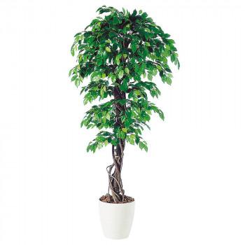 東北花材 TOKA 人工樹木 フィッカスベンジャミナリアナ 98521