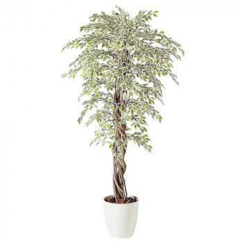 ※2021年1月中旬入荷分予約受付中 東北花材 TOKA 人工樹木 ベンジャミナスターライトリアナ 98527