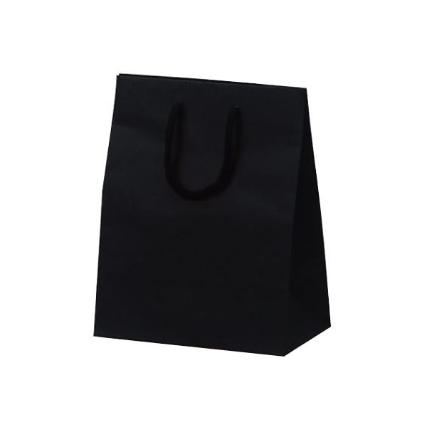 T-2 カラークラフト 紙袋 200×120×250mm 100枚 ブラック 1037ジュエリー スイーツ お店