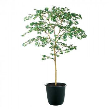 東北花材 TOKA 人工樹木 ヤマモミジ GREEN FST 91760