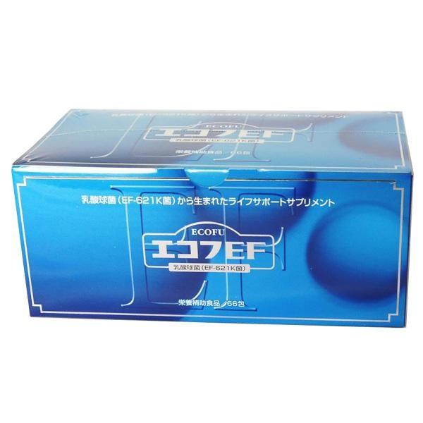 乳酸球菌(EF-621K菌)配合 エコフEF 79g(1.2g×66包)ビフィズス サプリメント ビフィズス菌