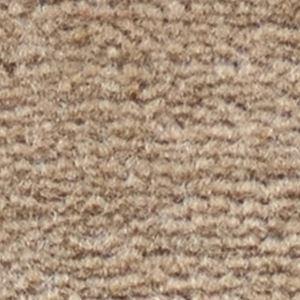 【送料無料】サンゲツカーペット サンフルーティ 色番FH-3 サイズ 200cm×200cm 【防ダニ】 【日本製】
