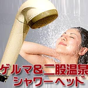 【送料無料】シャワーマスターデラックス【代引不可】