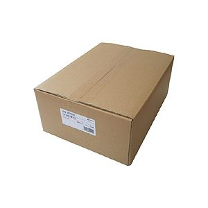 【送料無料】ヒサゴ コピー偽造防止用紙 浮き文字タイプ A4 両面 BP2110Z 1箱(1000枚)