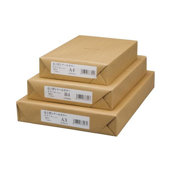 【送料無料】(業務用10セット) エイピーピー シナールカラー A4 厚口 500枚 若草