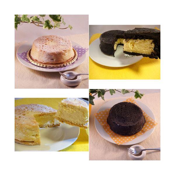 【送料無料】白黒チーズケーキセット 6台 (直径約12cm)【代引不可】