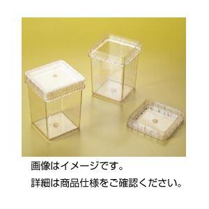 【送料無料】プラントボックス300ml 1箱(100個入)