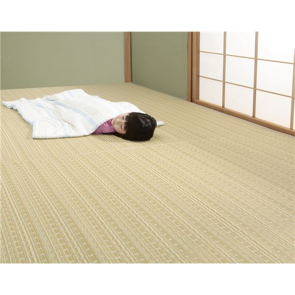 【送料無料】日本アトピー協会推薦カーペット ベージュ 本間6畳用【代引不可】