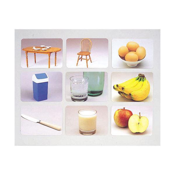 【送料無料】DLM 言語訓練写真カード2 食物と家具1245S