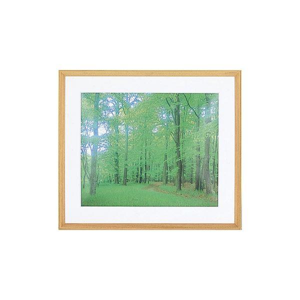 【送料無料】(業務用セット) 軽量木製写真額縁(三角縁)フォトフレーム A3判 フ-SW-217【×5セット】