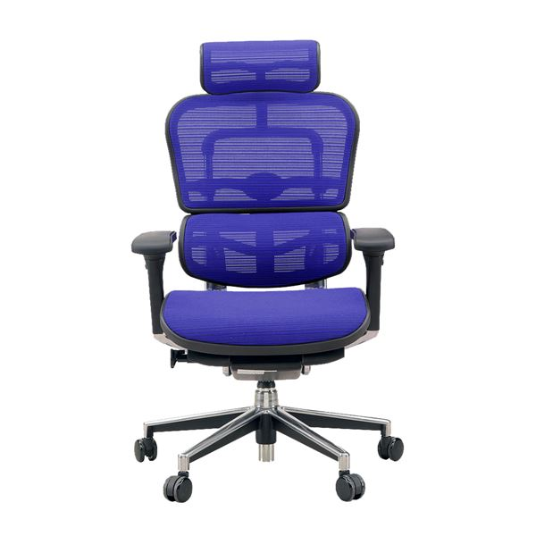 【送料無料】オフィスチェア アームレスト付き ランバーサポート付き Ergohuman Basic(エルゴヒューマンベーシック) ハイタイプ ブルー【代引不可】