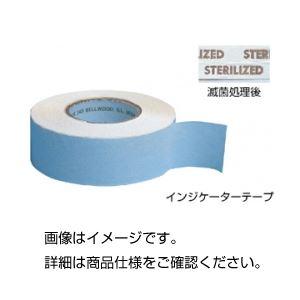 【送料無料】(まとめ)インジケーターテープ SIT-10【×10セット】