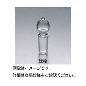 【送料無料】(まとめ)共通摺合球栓 15/25【×5セット】