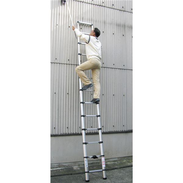 【送料無料】伸縮らくらくはしご3.8m【代引不可】