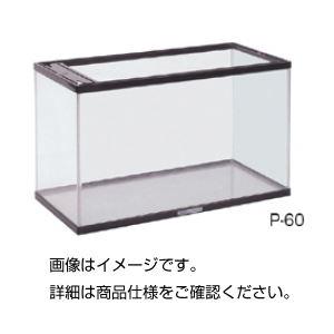 【送料無料】アクアリウムP-60SBW (エアーポンプ付)
