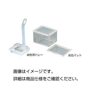 【送料無料】(まとめ)染色用トレー【×10セット】
