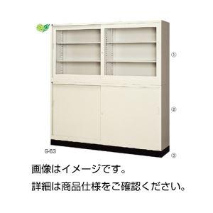 【送料無料】ガラス引違保管庫 ガラス引違戸 G-635SG