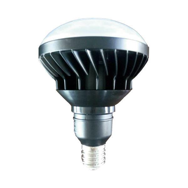 WINGACE LED投光器用 交換球 銀河50W LED-W50