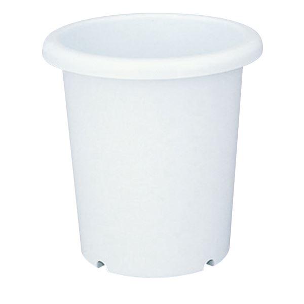 (まとめ) ベーシック 深型 植木鉢/ポット 【長鉢 7号 ホワイト】 穴付き シンプル ガーデニング用品 園芸 【×60個セット】