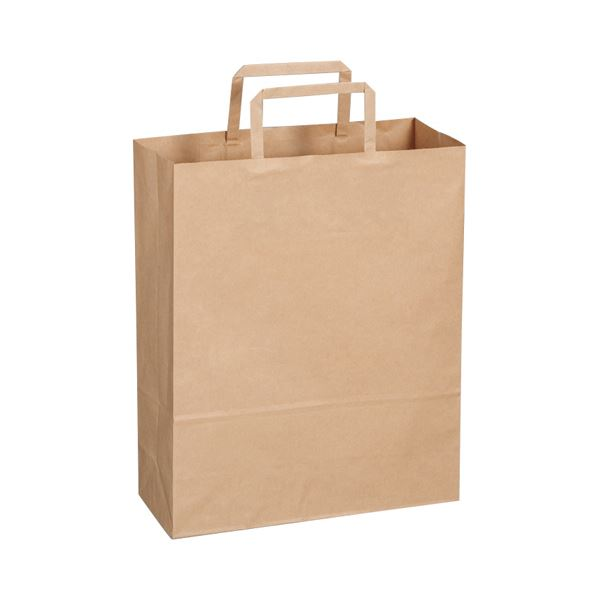 【送料無料】(まとめ)TANOSEE 紙手提袋 平紐 小ヨコ260×タテ320×マチ幅100mm 茶無地 1パック(50枚)【×10セット】