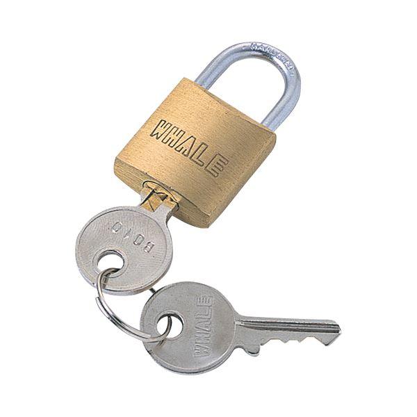 【送料無料】(まとめ) サンワサプライ eセキュリティ 南京錠小鍵No.7 SLE-2L-7 1個 【×30セット】