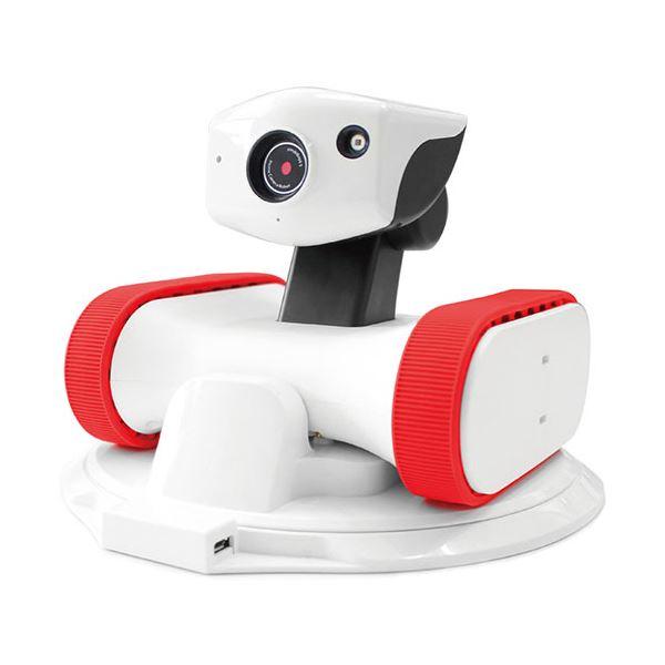 【送料無料】(まとめ) アボットライリー用交換シリコンベルトレッド 1個 【×30セット】