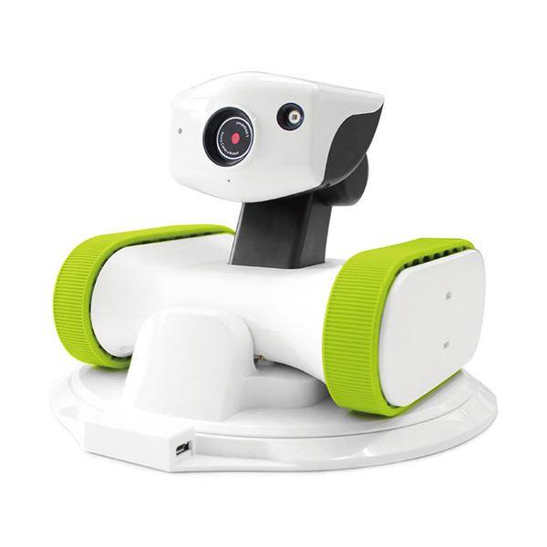 【送料無料】(まとめ) アボットライリー用交換シリコンベルトグリーン 1個 【×30セット】