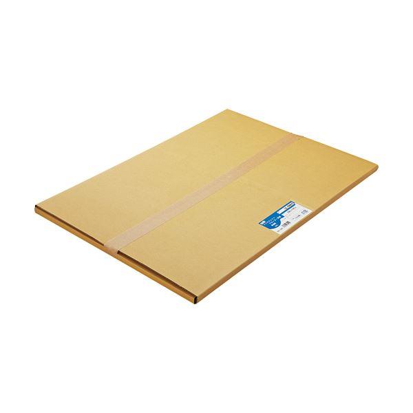 【送料無料】(まとめ) TANOSEE 普通紙 A2カット 420×594mm 1箱(100枚) 【×5セット】