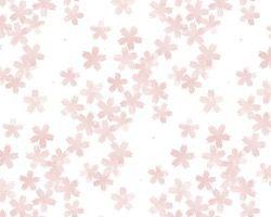 デジタルプリント壁紙 ナチュラル柄 n018 920mm×5m【アサヒペン】 03048403-001【03048403-001】[4549396484033][4549396484033]