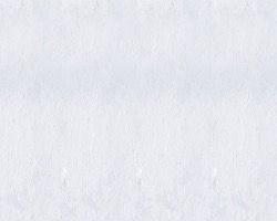 デジタルプリント壁紙 フェイク柄 F006 460mm×10m【アサヒペン】 03048096-001【03048096-001】[4549396480967][4549396480967]