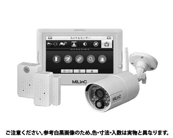 セキュリティカメラ 規格(LCS-101SD) 入数(1) 04253412-001【04253412-001】[4549663615030][4549663615030]
