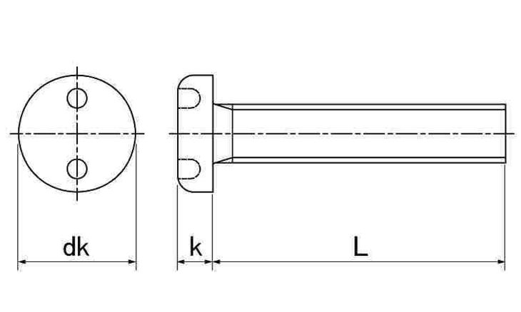 SUS ツーホール・ナベコ 表面処理(ナイロック(泰洋産工、阪神ネジ) ) 材質(ステンレス(SUS304、XM7等)) 規格( 5 X 30) 入数(100) 04179058-001【04179058-001】[4549638515037]