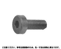 【送料無料】レニー黒(高強度ナイロン)六角穴付き低頭キャップスクリュー  規格( 4 X 16) 入数(1000) 03580558-001