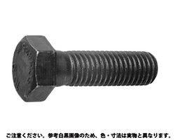 【送料無料】10.9 六角ボルト(ウィット  規格( 3/4X60) 入数(80) 03646541-001