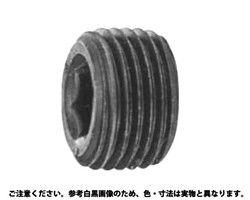プラグ(沈み(NB型(日産  規格( PT 1