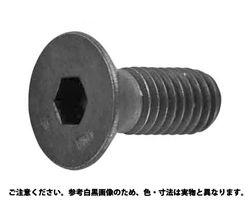 皿CAP(UNF(アンブラコ  規格(#10X1