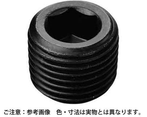プラグ(沈み(ロング(日星精工  規格(PP2 1