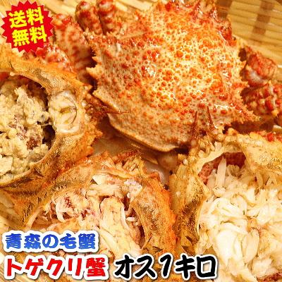 【送料無料】青森の毛蟹!トゲクリ蟹 1kg オス 約2杯~4杯この時期は脂が美味♪浜茹で直送だから届いたらすぐ食べられ…